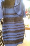 The Dress Debacle: how one photo caused the world to question their sanity